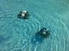 Πρώτη δοκιμή στην πισίνα του Π. Φαλήρου